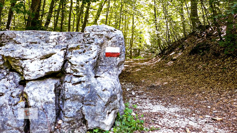 Fonte Romana, marcatore sentiero - Turista a due passi da casa