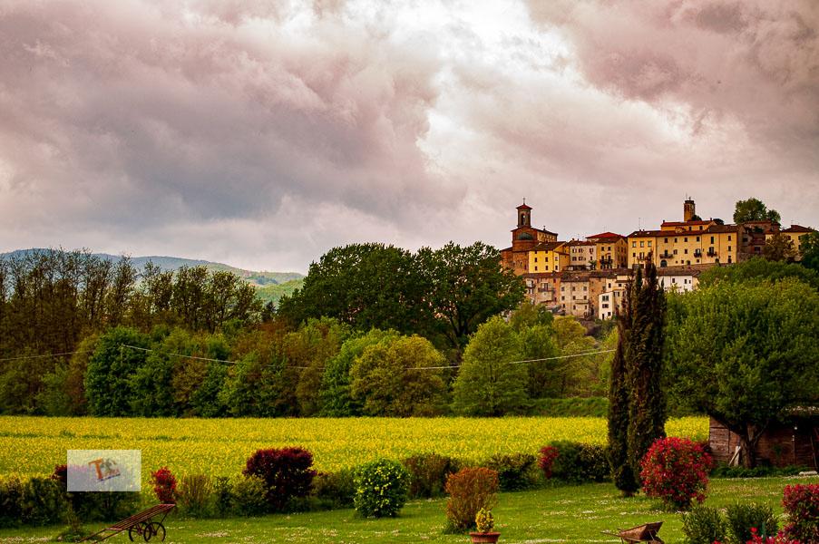 Itinerario Piero della Francesca, Monterchi panorama- Turista a due passi da casa