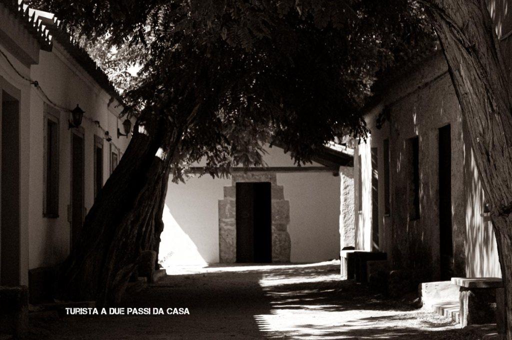 San Salvatore in Sinis, la chiesa